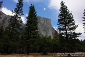 Yosemite-El-Capitan-11